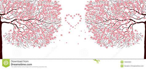Japanese Cherry Blossom Tree sakura trees stock image image 19840391