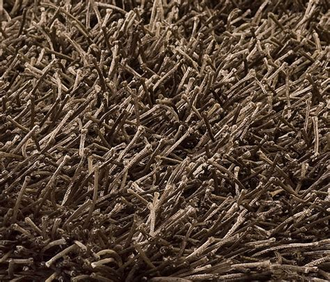 nv teppiche gelsenkirchen blomap erhalten sie interessante ideen f 252 r design