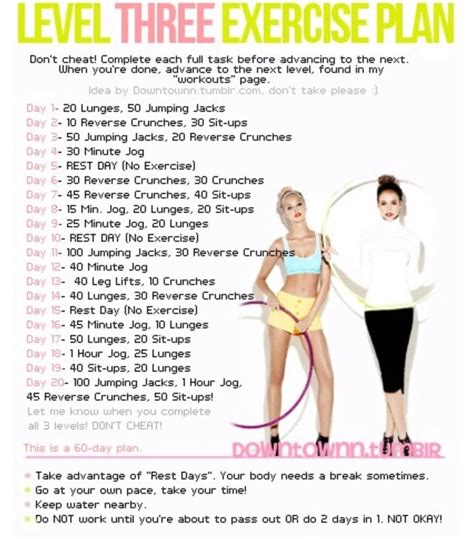 level 3 workout 20 day challenge work it out
