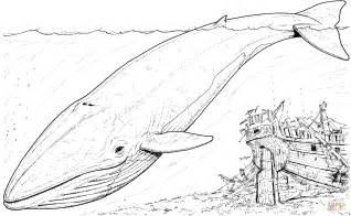 ausmalbild blauwal und gesunkenes boot