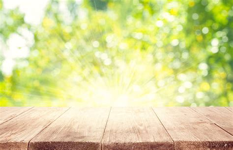 outdoor background free outdoor background images pictures and royalty free