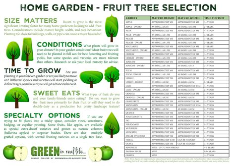 planning go and grow green in real life ideas for the home garden fruit tree