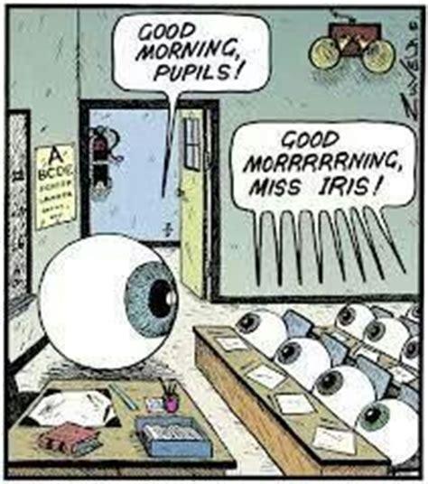 Eye Doctor Meme - 1000 images about eye humor on pinterest eye exam