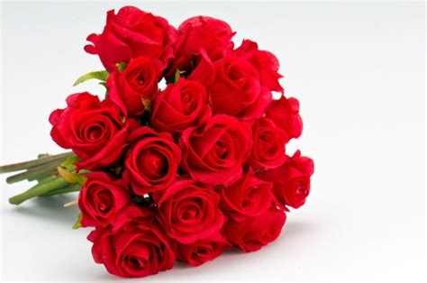 rosary from flowers flowers free stock photos 12 023 free stock