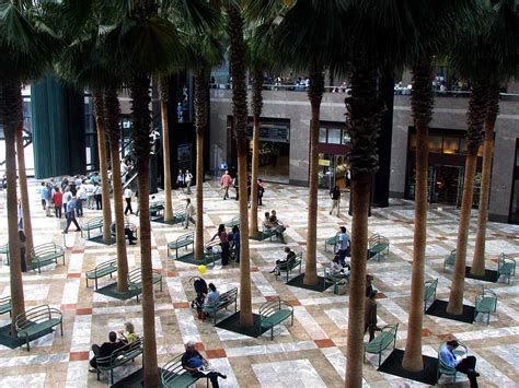 daily photo winter garden atrium