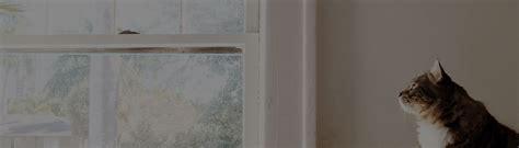 Holzfenster Lackieren Anleitung by Holzfenster Lackieren Sch 214 Ner Wohnen Farbe