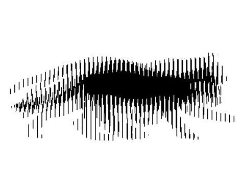 printable moving optical illusions amazing animated optical illusions mr barlow s blog