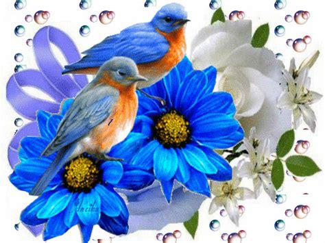 imagenes tiernas gif gifs hermosos imagenes tiernas encontradas en la web