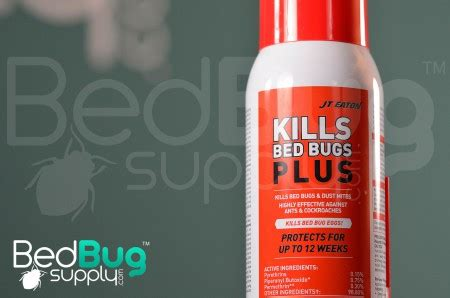 what kills bed bugs for good jt eaton kills bed bugs plus residual review