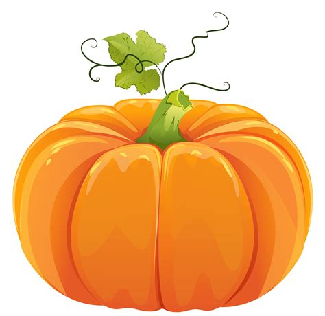 free pumpkin clipart pumpkin clipart transparent background clipartxtras