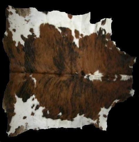animal skin area rugs animalskin area rug greenway carpet rug upholstery cleaning