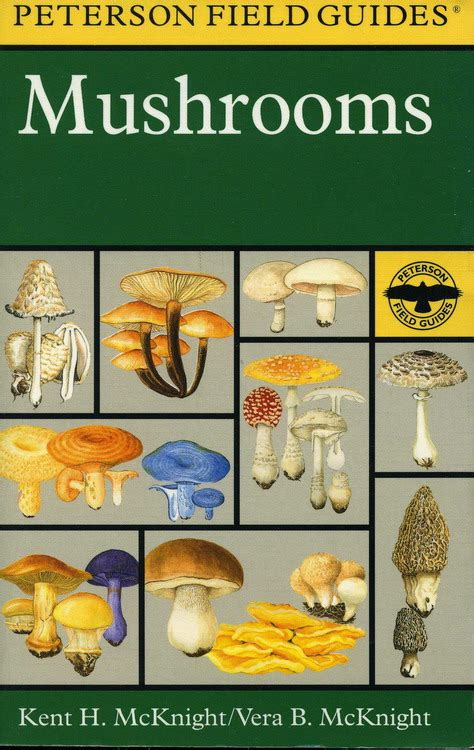 Simon Schuster S Guide To Mushrooms Book By Gary H field guides 171 mcandrew