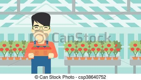 raccolta clipart raccolta vettore illustration tomatos contadino