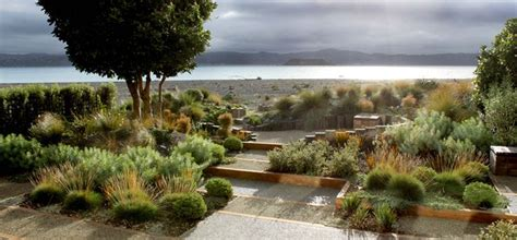 Seashore Gardens by Narrow Site For A Coastal Garden Used Indigenous