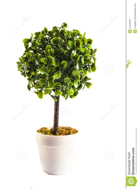 miniature artificial tree miniature artificial tree stock image image of decoration