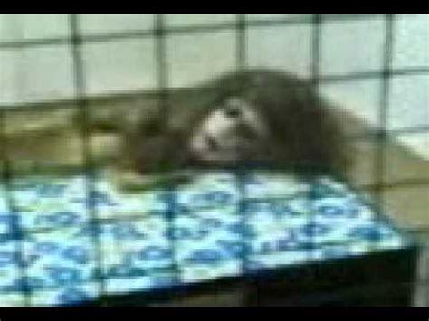 imagenes de duendes reales y feos fantasmas brujas duendes youtube