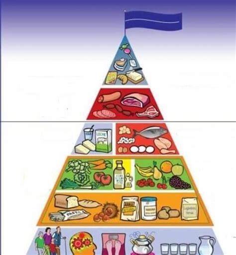 piramide alimentare oms 6 motivi per cui dovremmo bere acqua di cetriolo tutti i