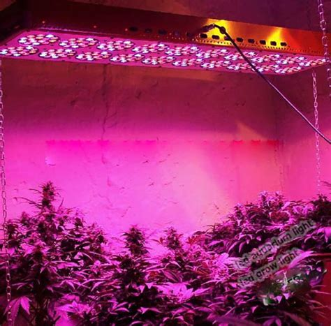 what is a grow light bossled 1600w full spectrum led grow light bossled
