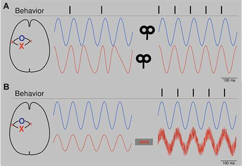 frontiers pathological mobilization and activities frontiers modulating pathological oscillations by