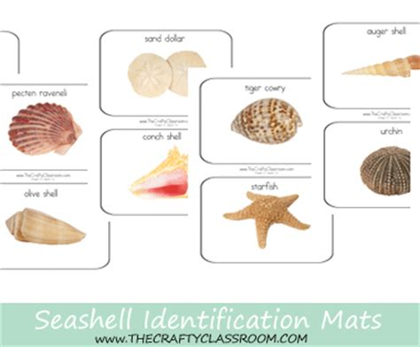 Where Can I Use My Shell Gift Card - homeschool printables