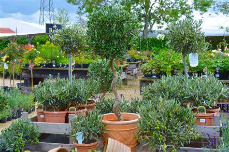 lowden garden centre garden home restaurant
