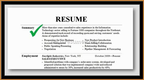 Sle Professional Resume by Professional Summary For Resume 28 Images Professional