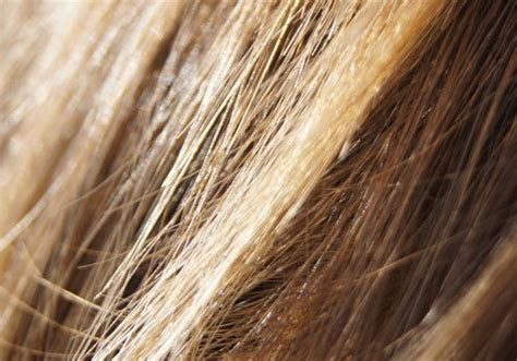 exploring some necessary information on light brown hair color short layers on top long layers on bottom hair