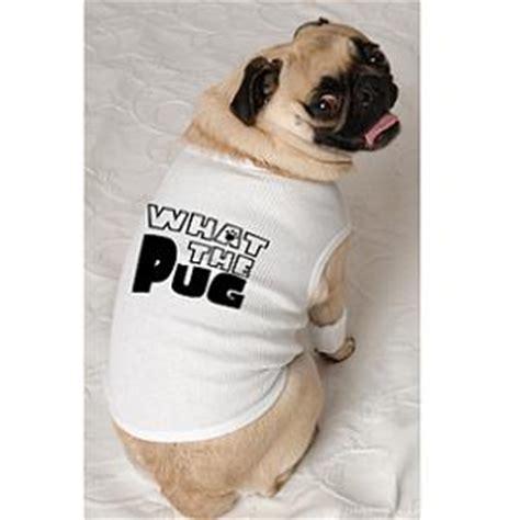 pug boutique pug stuffed paws point pet deli and boutique paws point is a boutique and deli