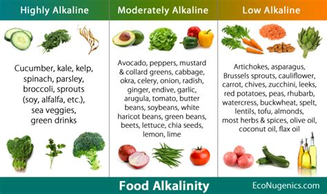 printable alkaline recipes acid alkaline ph quick reference food chart janegrok