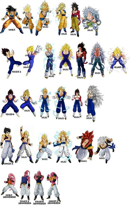 all ve as forms and transformations imagenes de vegeta goku and vegeta transformations an buu absorbtions by