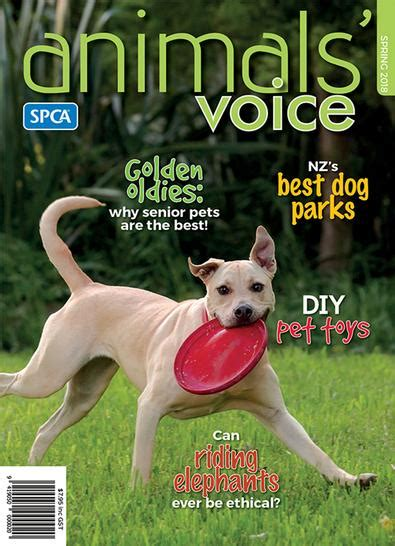 animals voice nz magazine subscription isubscribe