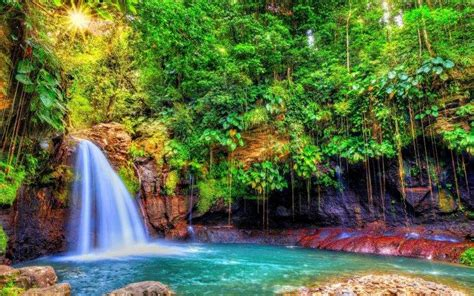 nature landscape waterfall forest sun rays shrubs