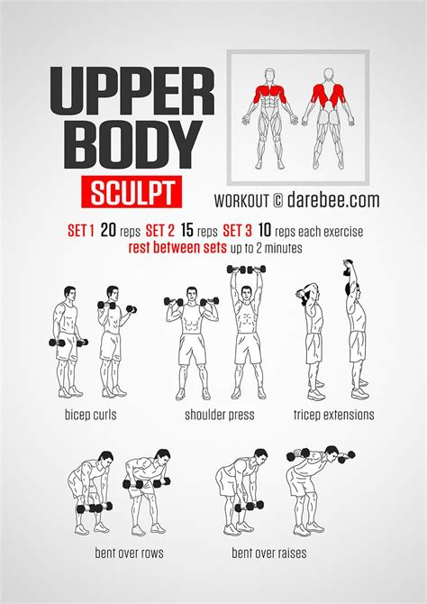 darebee on quot sculpt dumbbell workout