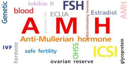 anti muellerian hormone assignment point