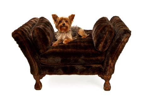 xlarge dog beds large dog beds xlarge dog bed pet bedding with removable