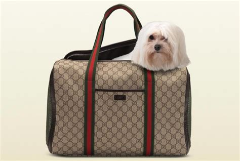 Tas Chanel 403 gucci gift ideas for the whole family