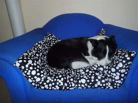 big pillow bed giant comfy pillow pet bed diyideacenter com