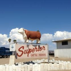 Feeders Supply Highway Superior Cattle Feeders Livestock Feed Supply 6050