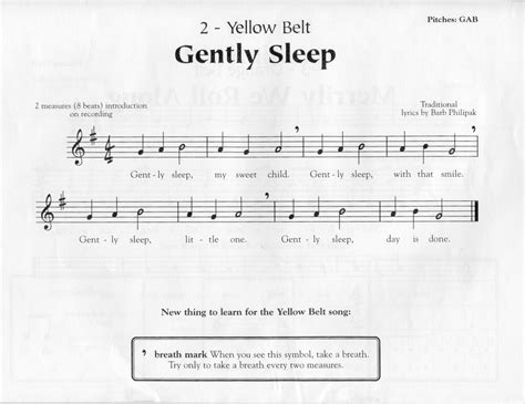 recorder gently sleep on