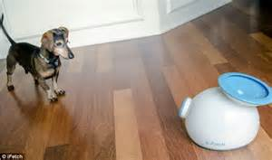 how far can dogs run can t be bothered to walk your don t worry this 163 60 robot plays fetch for you