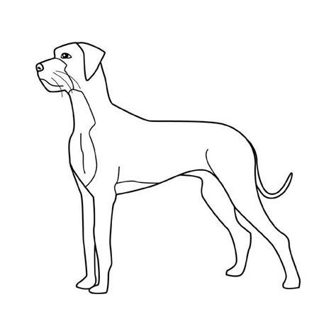 imagenes para dibujar de perros pitbull imagenes de perros pitbull para dibujar imagui