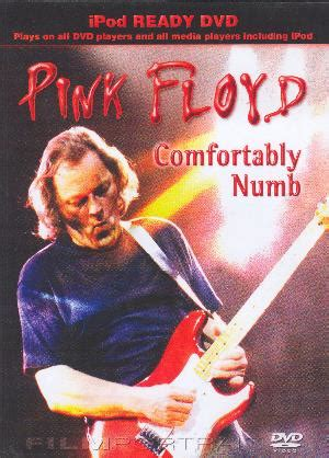 comfortably numb covers pink floyd comfortably numb reviews
