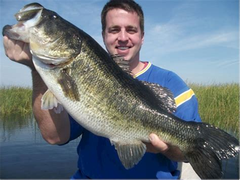 biggest bass boat in the world world record bass largemouth bass pictures