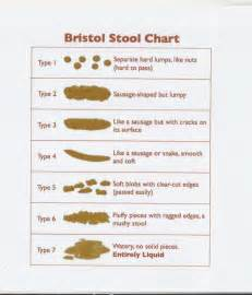 bristol stool chart explanation pictures to pin on