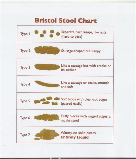 Bristol Stool Color Chart by Bristol Stool Color Chart Pictures To Pin On