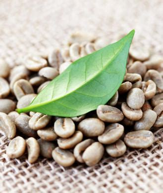 Green Coffee Bean Handel green coffee bean extract facts and safety shape magazine