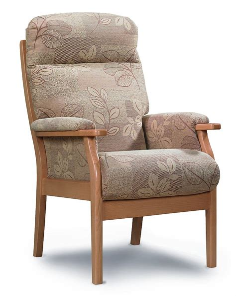 Cheshire Chair by Cintique Cheshire Chair