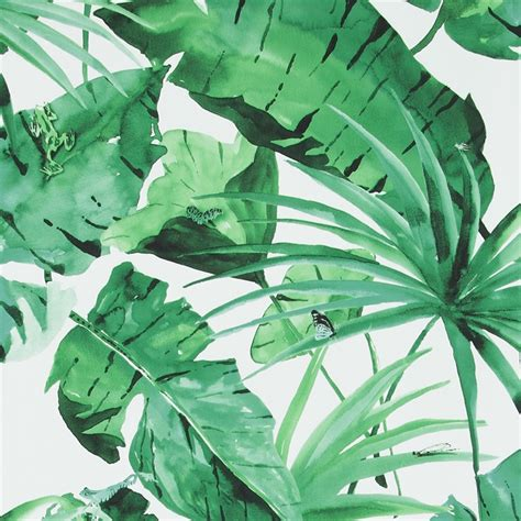wallpaper tropical green tropical natural green and white leaves wallpaper walls