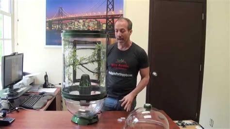 review  biobubble chameleon cantina   petman