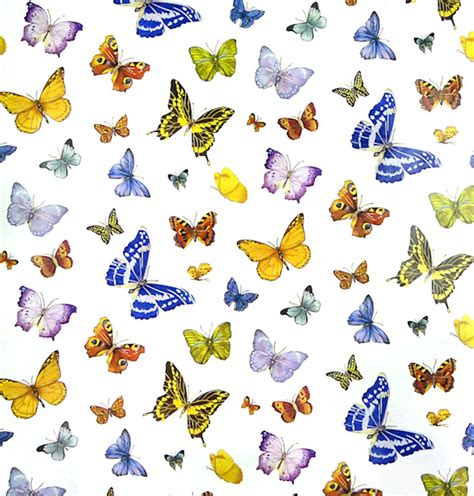 free printable butterfly wrapping paper bug gifts butterfly party supplies and birthday gifts